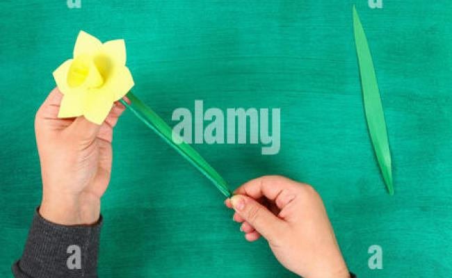 Diy Spring Flowers Daffodils Of Yellow Paper On A Green