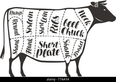 Beef cuts. Animal silhouette cow, bull. Vector diagram for
