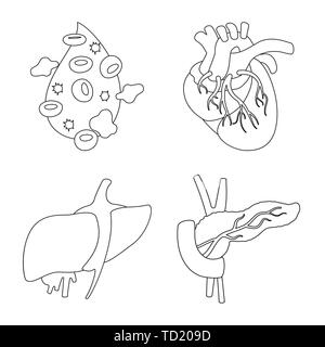 Cardiology and blood donation vector medical logos