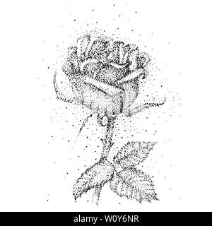 Hand drawn sketch of rose, single bud Detailed vintage