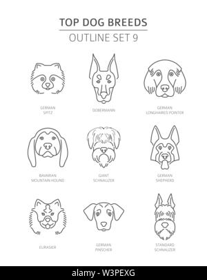 Top dog breeds. Pet outline collection. Vector