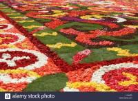 Flower Carpet Brussels Stock Photos & Flower Carpet ...