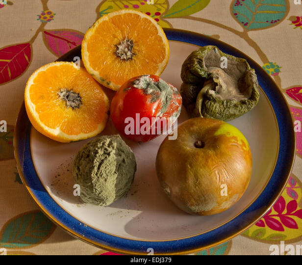 Mouldy Fruit Stock Photos & Mouldy Fruit Stock Images