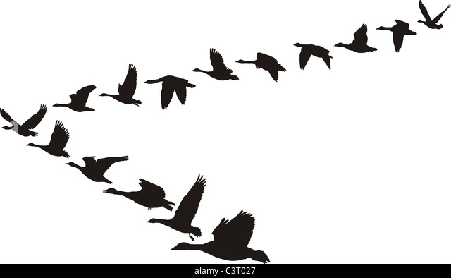 Flying Geese Art Stock Photos & Flying Geese Art Stock