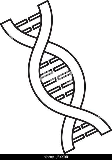 Gene Stock Prints