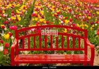 Garden Benches Stock Photos & Garden Benches Stock Images ...