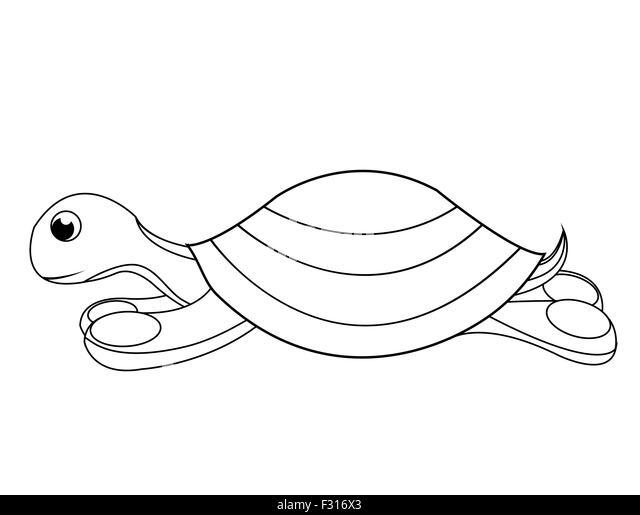 Illustrations Turtle Stock Photos & Illustrations Turtle