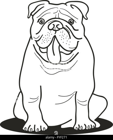 British Bulldog Drawing Stock Photos & British Bulldog