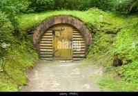 Underground Forest Stock Photos & Underground Forest Stock ...