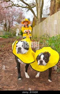 Boy Dog Costume Stock Photos & Boy Dog Costume Stock ...