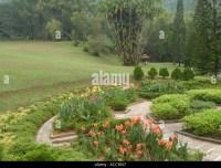 Tropical Garden Border Stock Photos & Tropical Garden ...
