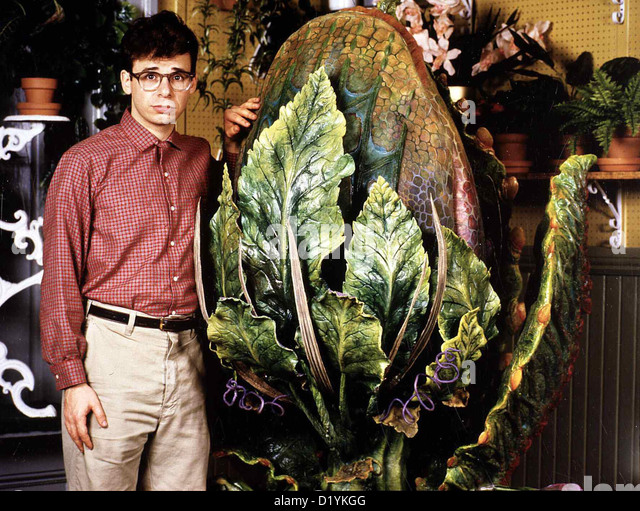 Little Shop Of Horrors Stock Photos  Little Shop Of Horrors Stock Images  Alamy