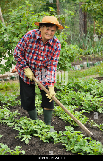 Woman Hoeing Stock Photos Amp Woman Hoeing Stock Images Alamy