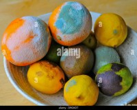 Mouldy Food Stock Photos & Mouldy Food Stock Images - Alamy