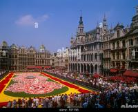 Brussels Grand Place Flower Carpet Stock Photos & Brussels ...