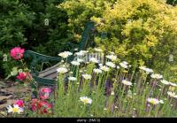 Bench Flower Flowers Garden Stock Photos & Bench Flower ...