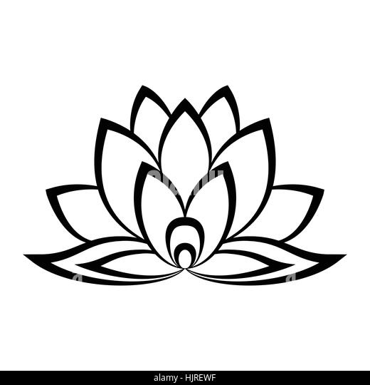 Lineart Lotus Flower Line Illustration Vector Abstract Black And