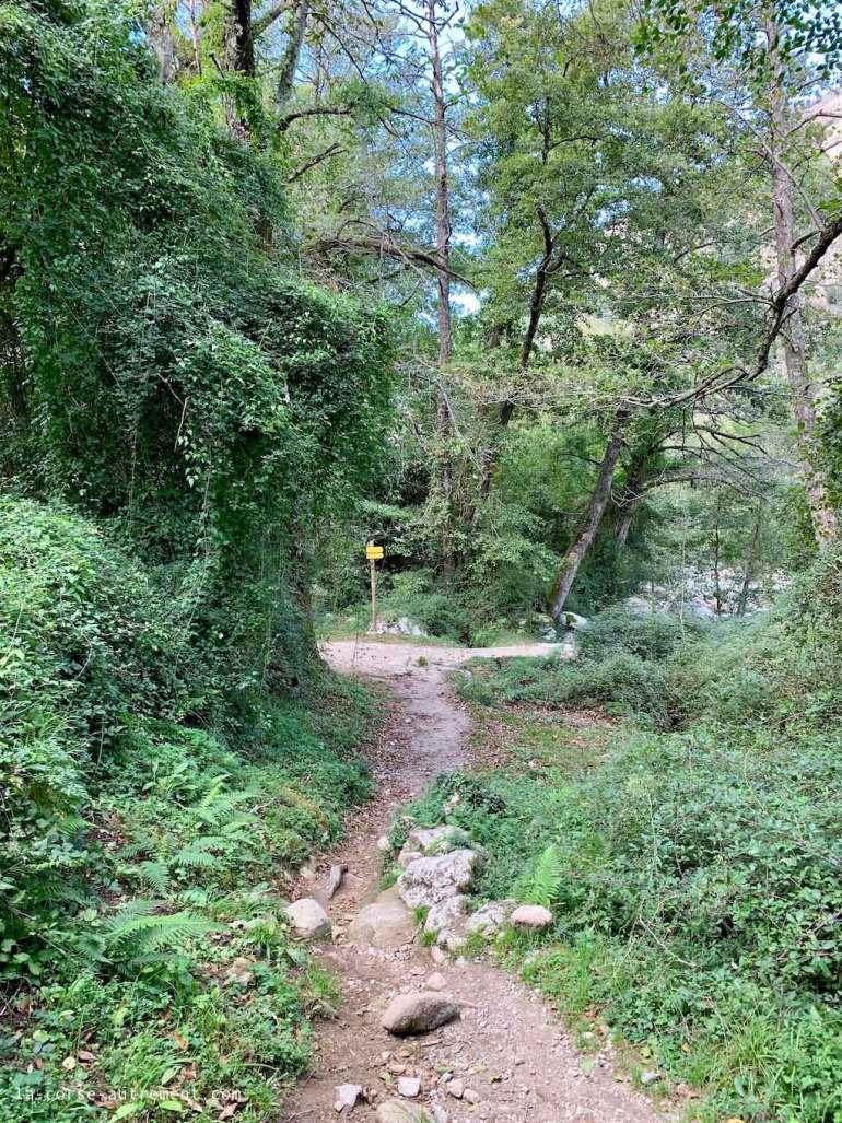 Canyon de la Richiusa