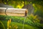Installer un jardin japonais chez soi: la spiritualité nippone au service du bien-être