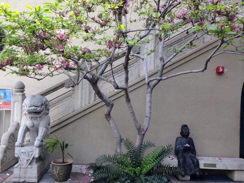 Pacific Asia Museum