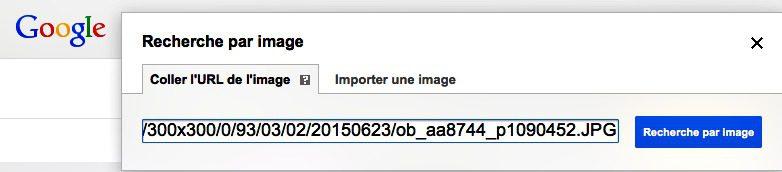 Google Images : comment rechercher l'origine d'une image