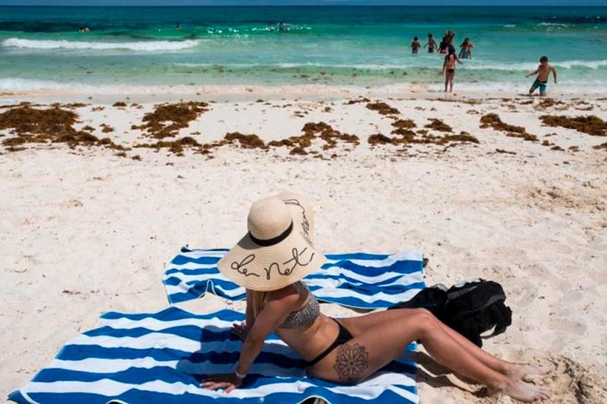 sargazo méxico playa caribe turistas