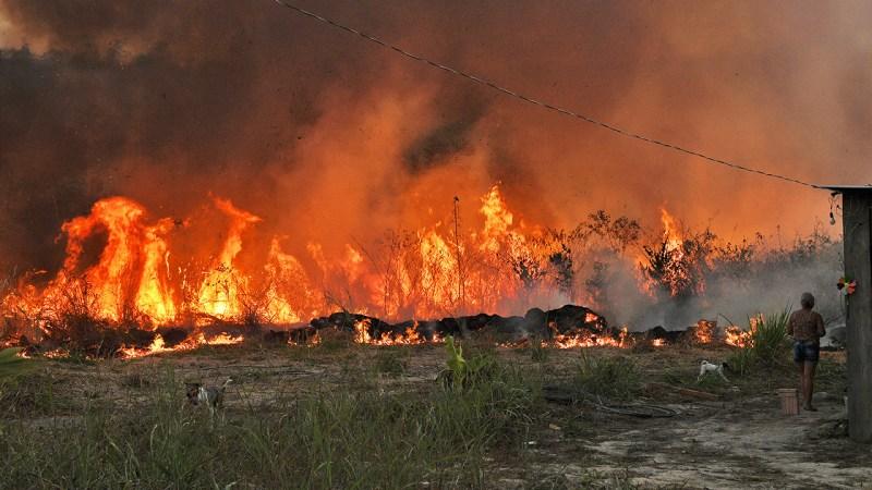 Casi el 20% de Brasil sufrió al menos un incendio en los últimos 35 años