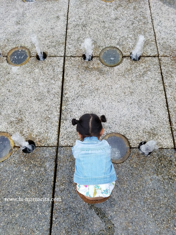 Music Center Water Fountains.jpg