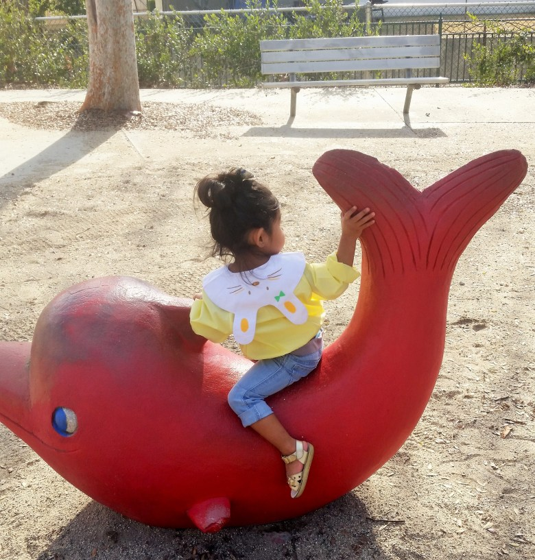 Red Dolphin slide at the Laguna San Gabriel playground in Los Angeles. Perfect place for an under the sea theme kids party.