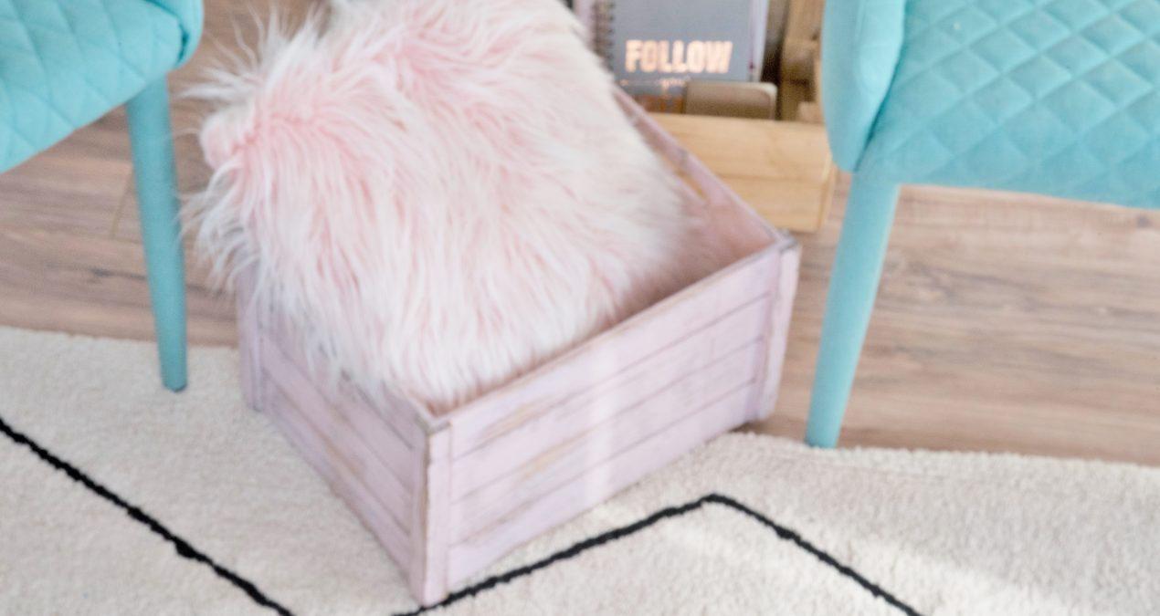 She Shed Sneak Peek+ Lorena Canals Washable Rug Review