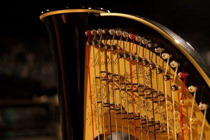 Détail cadre harpe