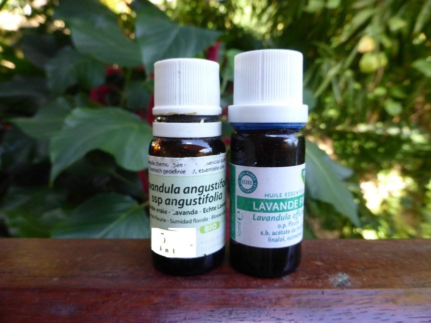 La lavande une huile essentielle qui se bat contre les - Lavande contre moustique ...