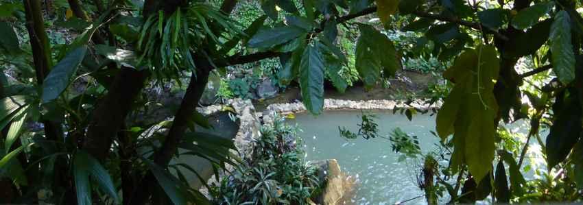 Sources chaudes en Dominique : naturellement sulfureuse ! Les vertus du soufre