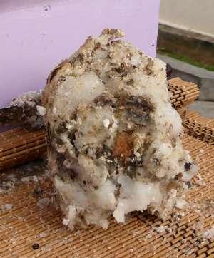Bloc de résine de gommier blanc photographié à la foire agricole de Rivière Pilote
