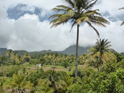 Un environnement encore préservé et des richesses naturelles exceptionnelles