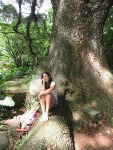 calme-meditation-arbre