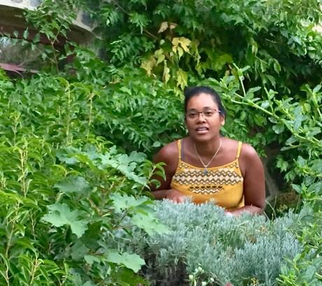 ferme en permaculture