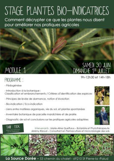plantes bioindicatrices