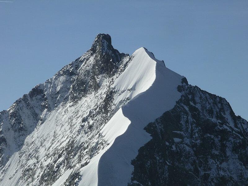 L'arête blanche et le sommet du Piz Bernina