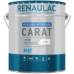 Carat mat Renaulac peinture mat garnissante à base de résine acrylique en phase aqueuse. Travaux de finition B. La vie en couleur