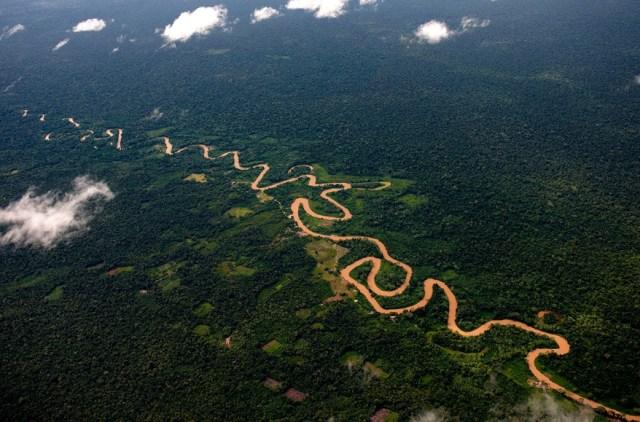 Amazonia colombiana deberá ser protegida de forma inmediata