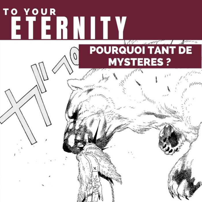 To Your Eternity : pourquoi tant de mystères ? – La 5e de Couv' – #5DC – Saison 6 Episode 8