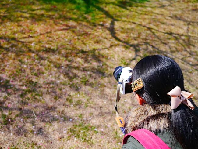 大高緑地公園の梅林を撮影しました!