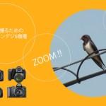 BIRDERがオススメしている野鳥を撮るための超望遠コンデジ6機種