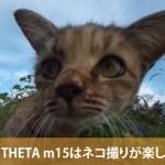新型THETAはここが違う!RICOH THETA m15はネコ撮りが楽しかった!
