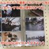 フィルムカメラで撮影したプリント写真をiPhoneでスキャンする時に便利なアプリ