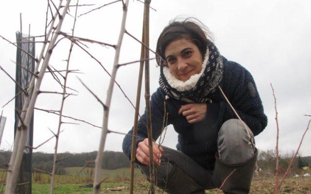 Cette agricultrice va planter 4 000 arbres pour former une haie de presque quatre kilomètres dans ses champs. La cohabitation arbres légumes devrait permettre d'augmenter la biodiversité et de doper la production.