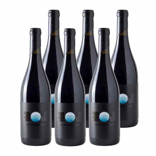 La Fontiña de Nai 2018 DO Bierzo Mencía Vino Tinto (Caja de 6 botellas)