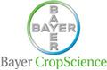 logo_bayercrop