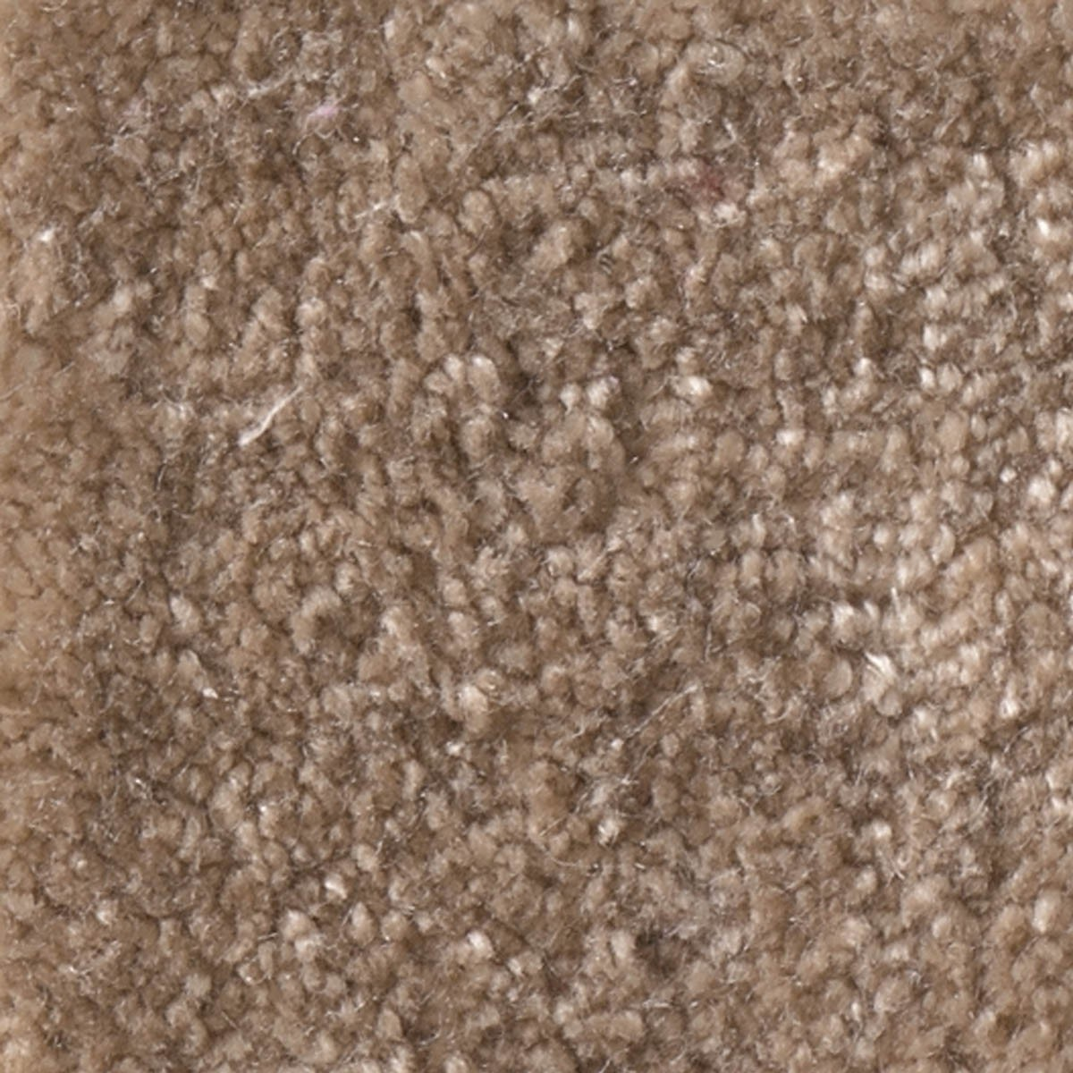Teppich Grau 2 X 3 M Quotpure Silk Quot Teppich Quarz 2 00 X 3 00 M Object Carpet
